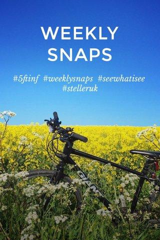 WEEKLY SNAPS #5ftinf #weeklysnaps #seewhatisee #stelleruk