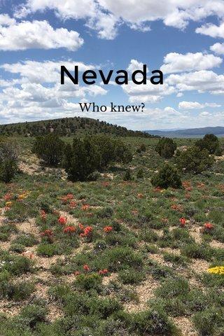 Nevada Who knew?
