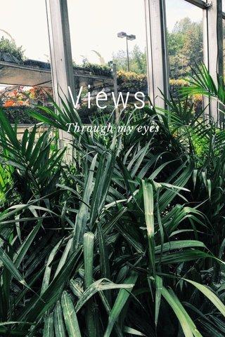 Views. Through my eyes