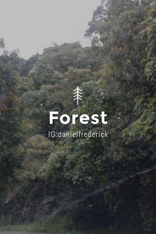 Forest IG:danielfrederick