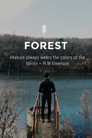 FOREST «Nature always wears the colors of the spirit» ~ R.W Emerson
