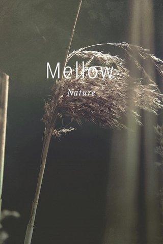 Mellow Nature
