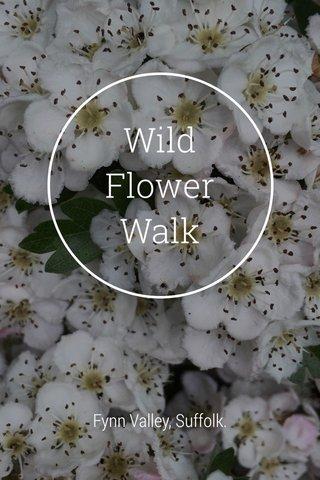 Wild Flower Walk Fynn Valley, Suffolk.