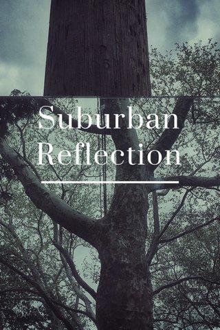 Suburban Reflection