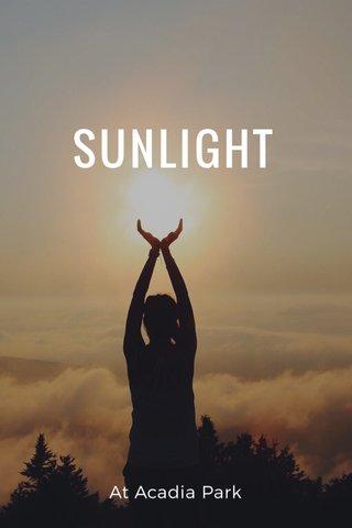 SUNLIGHT At Acadia Park