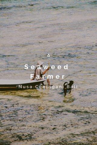 Seaweed Farmer Nusa Ceningan, Bali