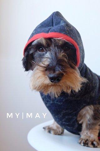 MY|MAY
