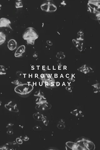 STELLER THROWBACK THURSDAY