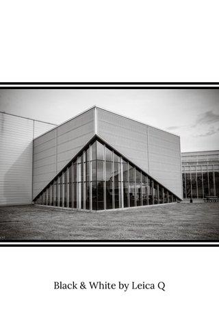 Black & White by Leica Q