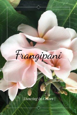 Frangipani |Dancing in Colors |