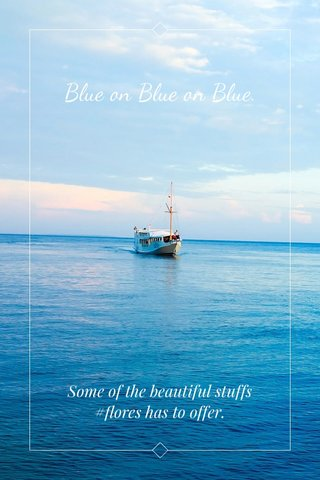 Blue on Blue on Blue. Some of the beautiful stuffs #flores has to offer.