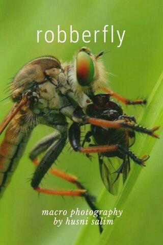 robberfly macro photography by husni salim