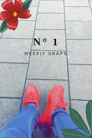 N° 1 WEEKLY SNAPS