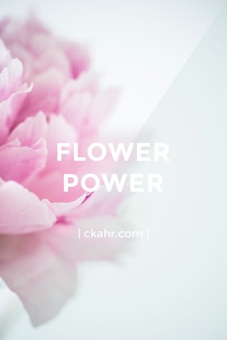 FLOWER POWER | ckahr.com |