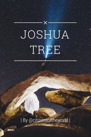 JOSHUA TREE | By @citizensoftheworld |