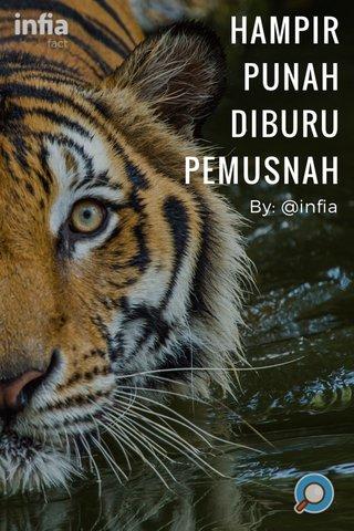 HAMPIR PUNAH DIBURU PEMUSNAH By: @infia