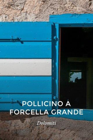 POLLICINO A FORCELLA GRANDE Dolomiti
