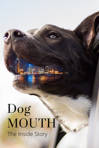 Dog MOUTH The Inside Story