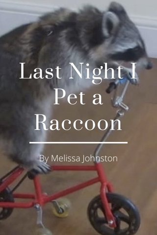 Last Night I Pet a Raccoon By Melissa Johnston
