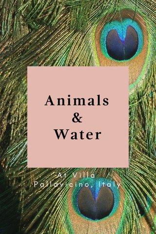 Animals & Water At Villa Pallavicino, Italy
