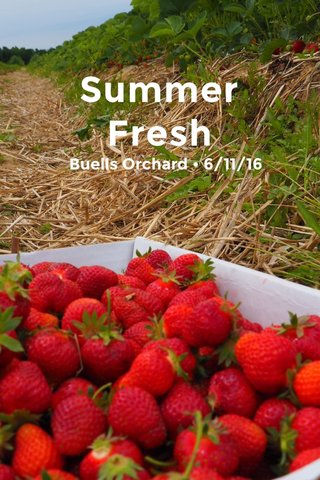 Summer Fresh Buells Orchard • 6/11/16