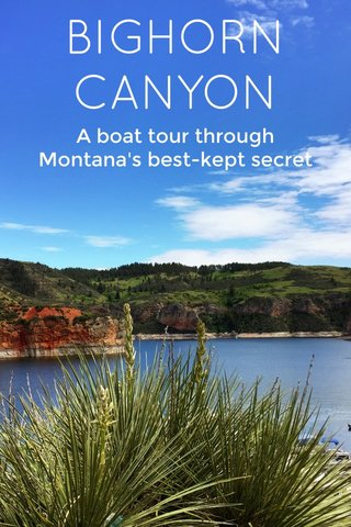BIGHORN CANYON A boat tour through Montana's best-kept secret