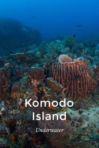 Komodo Island Underwater