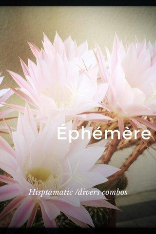 Éphémère Hisptamatic /divers combos