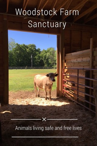 Woodstock Farm Sanctuary Animals living safe and free lives