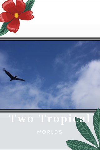 Two Tropical WORLDS