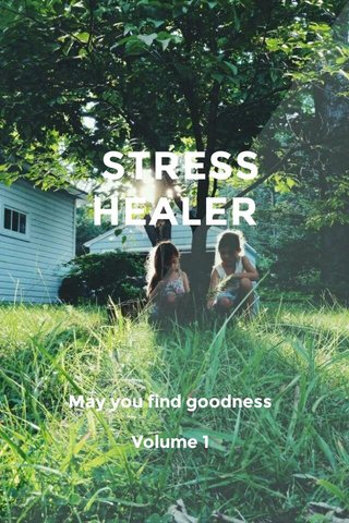 STRESS HEALER May you find goodness Volume 1