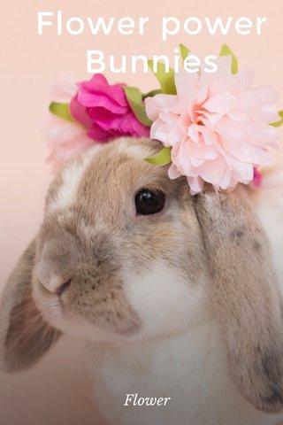 Flower power Bunnies Flower