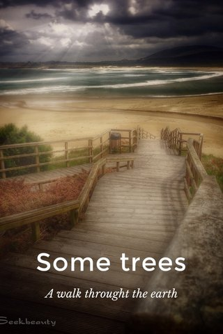 Some trees A walk throught the earth