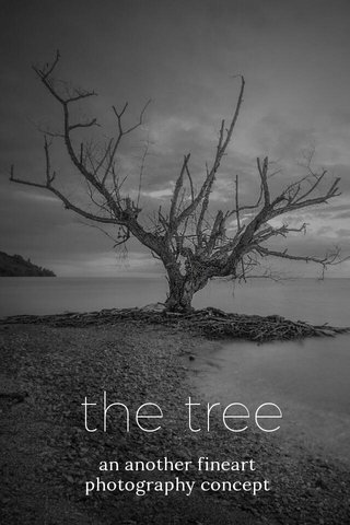 the tree an another fineart photography concept