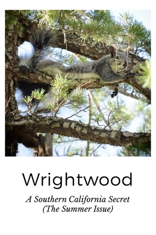 Wrightwood A Southern California Secret (The Summer Issue)