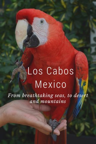 Los Cabos Mexico From breathtaking seas, to desert and mountains