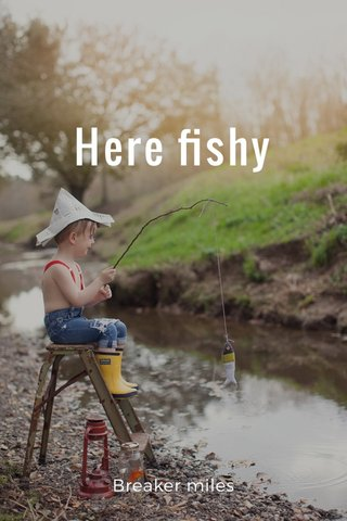 Here fishy Breaker miles