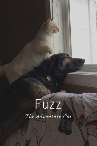 Fuzz The Adventure Cat