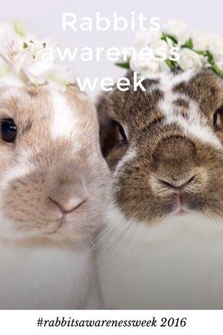 Rabbits awareness week #rabbitsawarenessweek 2016