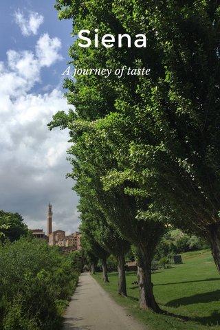 Siena A journey of taste