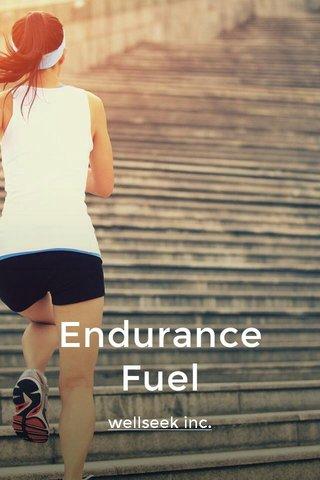 Endurance Fuel wellseek inc.