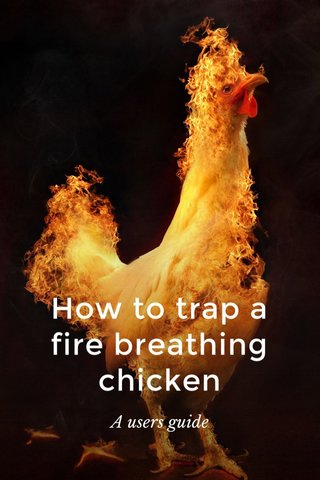 How to trap a fire breathing chicken A users guide