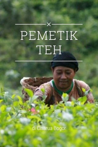 PEMETIK TEH di Cisarua Bogor