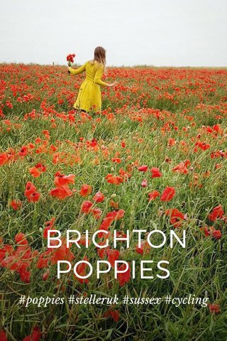 BRIGHTON POPPIES #poppies #stelleruk #sussex #cycling