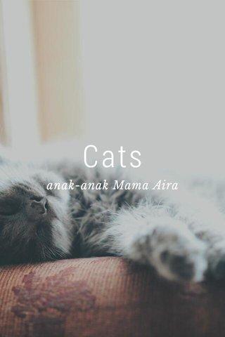 Cats anak-anak Mama Aira