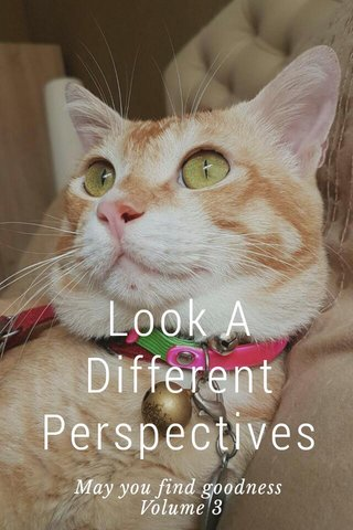 Look A Different Perspectives May you find goodness Volume 3