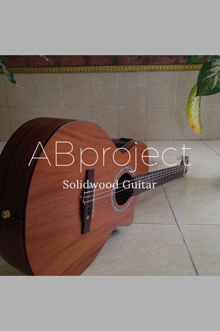 ABproject Solidwood Guitar