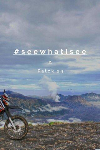 #seewhatisee Patok 29