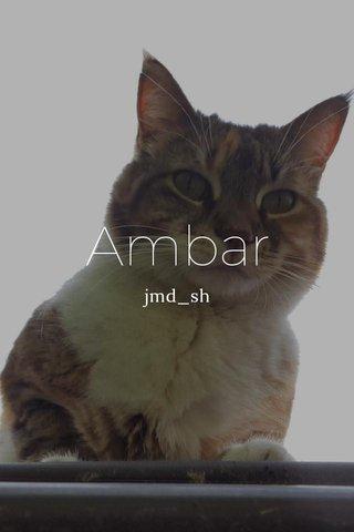 Ambar jmd_sh