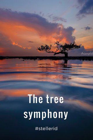 The tree symphony #stellerid